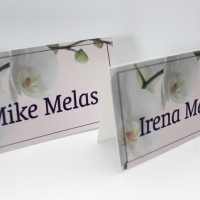 Custom Place Cards are made with your theme and coloring in mind before being printed