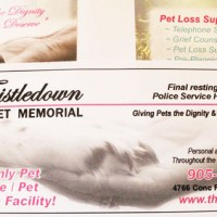 newspaper ads, brochures,vDouble sided flyers, print materials, marketing materials used for all types of businesses.